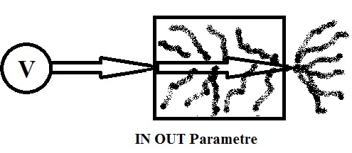 IN_OUT_Parameter