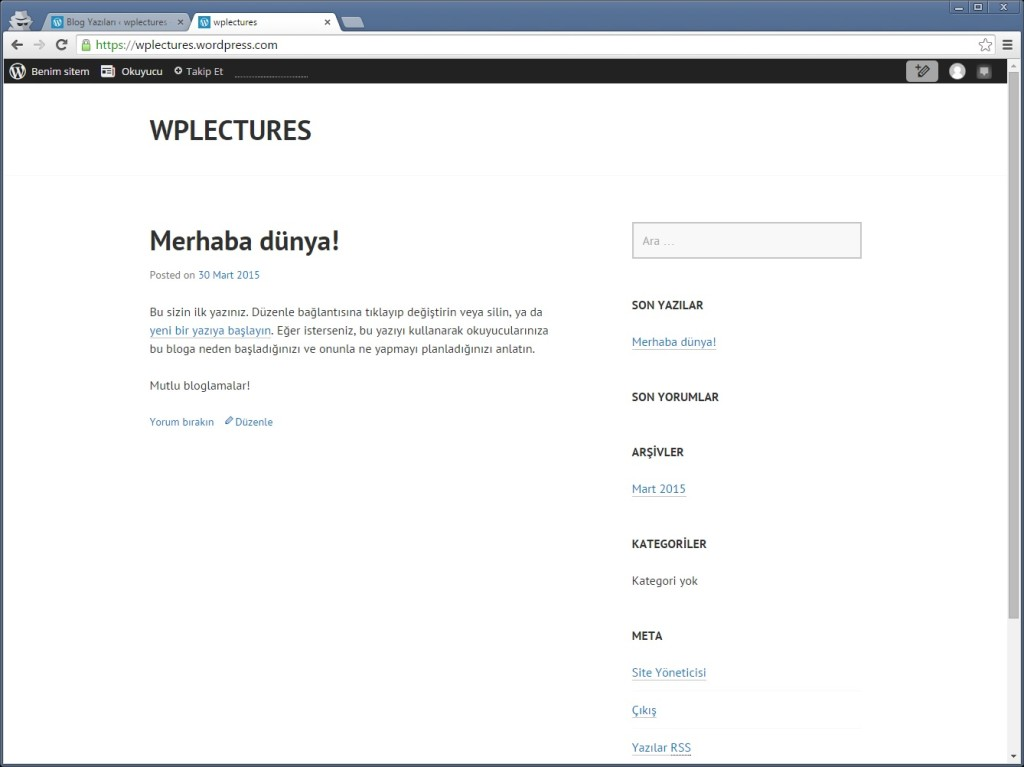 WordPress_7